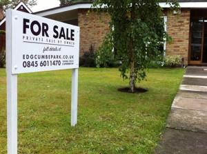 For Sale - our private sale board!